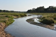Sand river through MalaMala Game Reserve