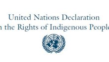 United Nations design and logo about the Declaration on the Rights of Indigenous Peoples