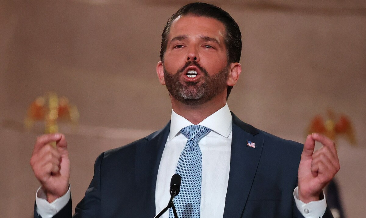 Trump jr arrest record