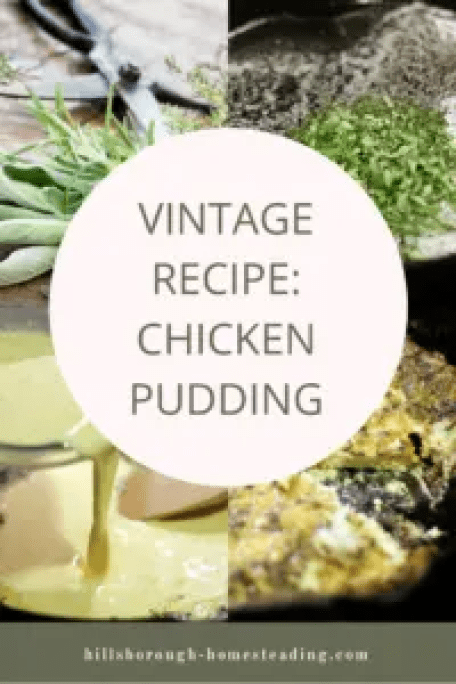 chicken pudding recipe