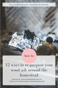 12 ways to re-purpose re-use uses for wood ash fireplace ash homestead farm chickens