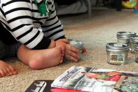 baby helping with seeds