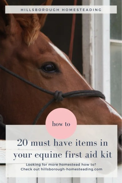 homemade equine first aid kit