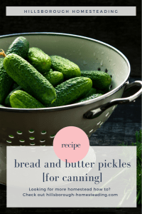 easy bread and butter pickles recipe for canning