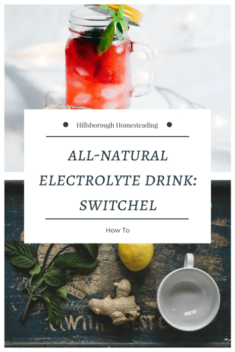 switchel electrolyte drink natural amish haymakers punch