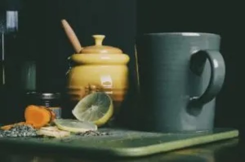 online herbal medicine course class herbal academy review