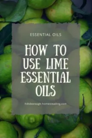 how to use lime essential oil oils homestead farm animals ideas recipes
