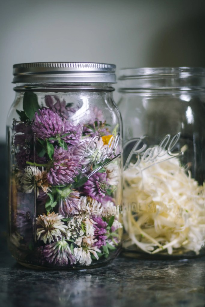 herbal sun tea with red clover and honeysuckle