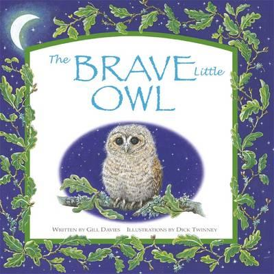 the-brave-little-owl