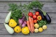 Organic Gardening – free workshop