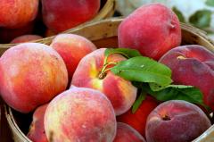 Peaches (cc) Phil Romans