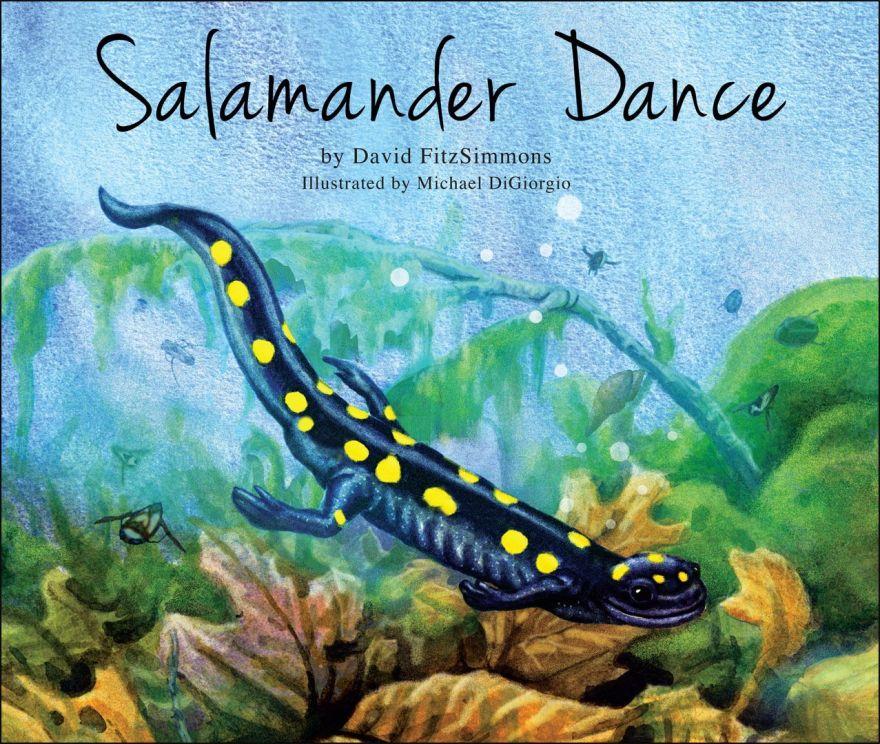 Salamander Dance book cover