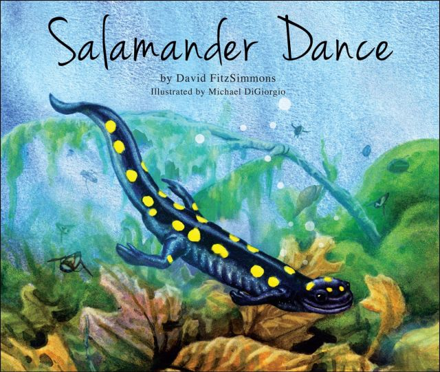 Salamander Dance book cover