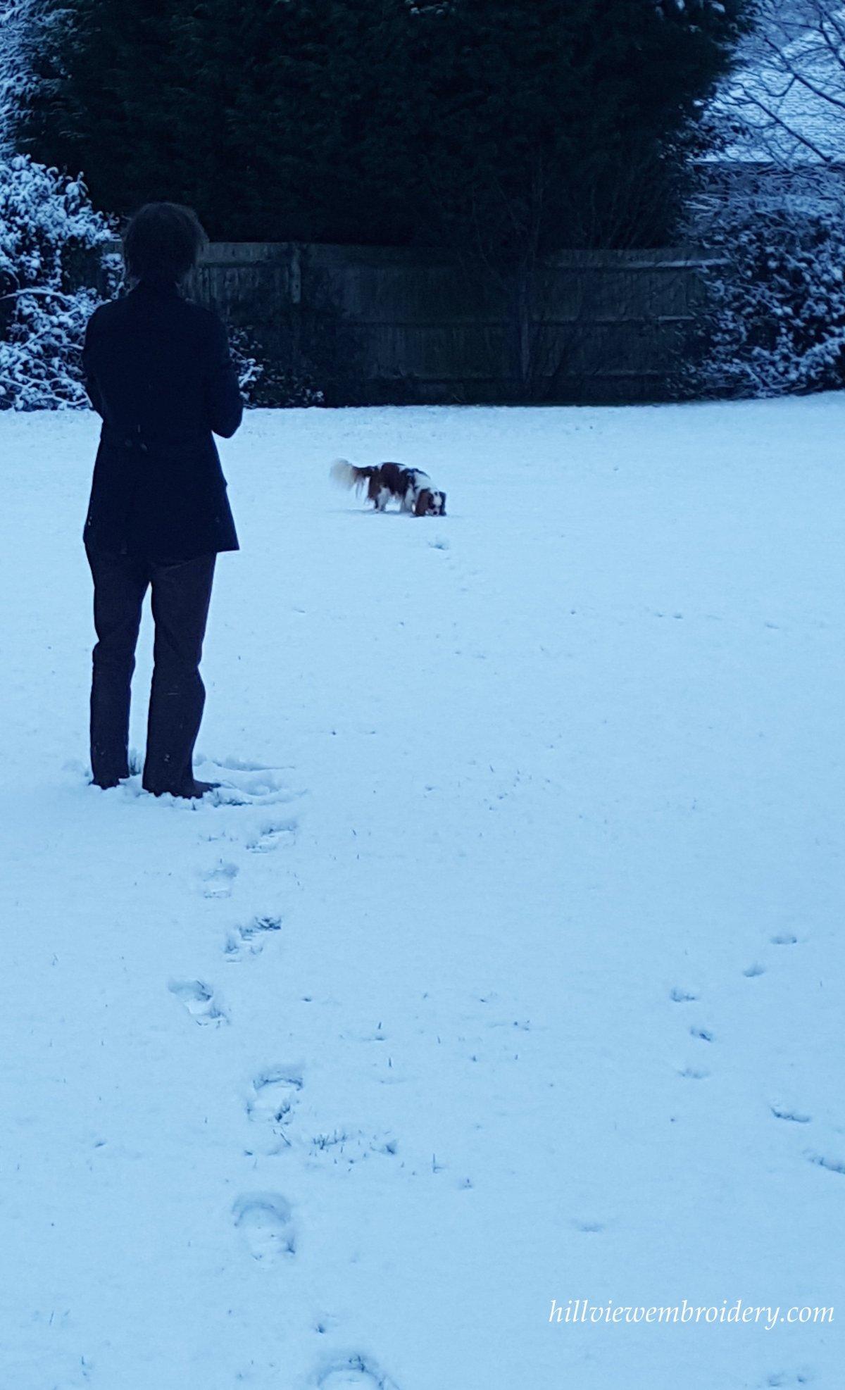 investigating snow.jpg