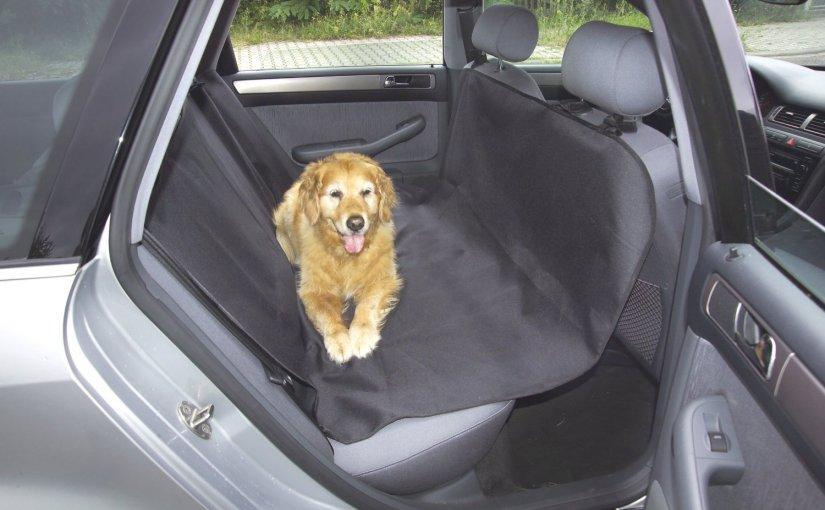 Manta de coche para perros por 12 €