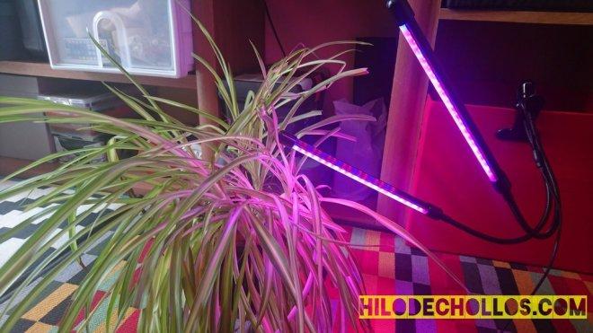 lámpara para plantas