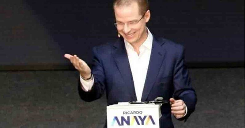 Anaya confirma petición a OEA para que envíe observadores electorales