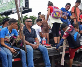Ofrecen asesoría por WhatsApp a inmigrantes
