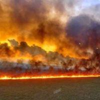 Selva de la Amazonia arde a una velocidad récord