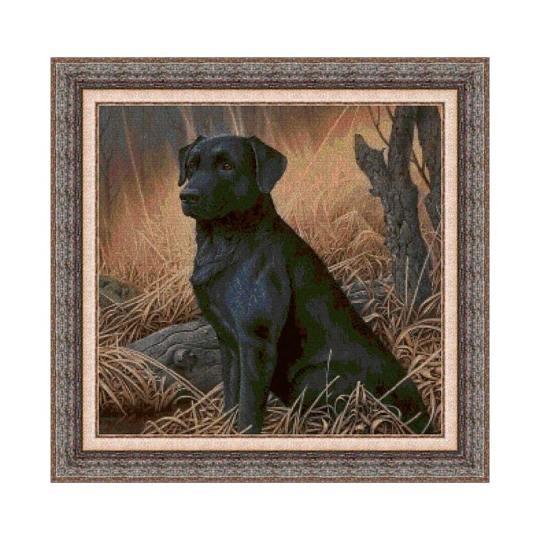 Kit de punto de cruz de Animales, perro labrador negro