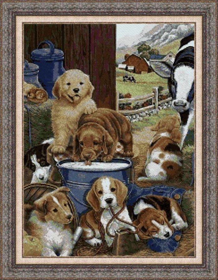 Animales 0116 1