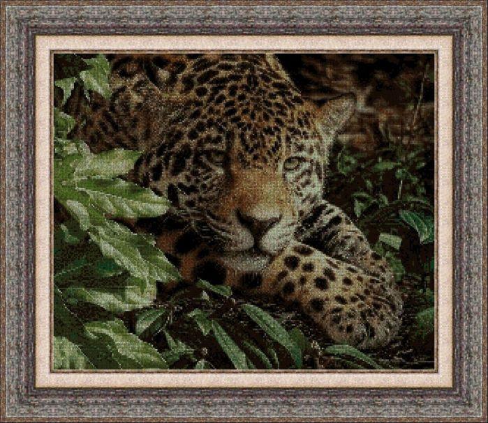 Animales 0035 1