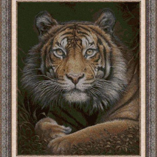 Animales 0126