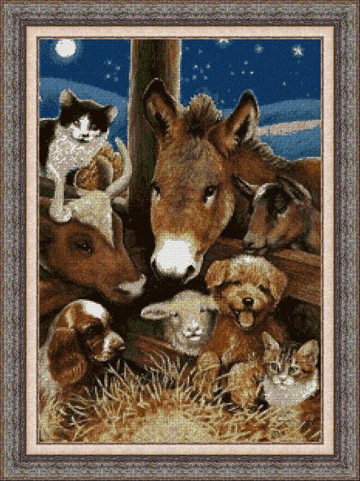 Animales 0138