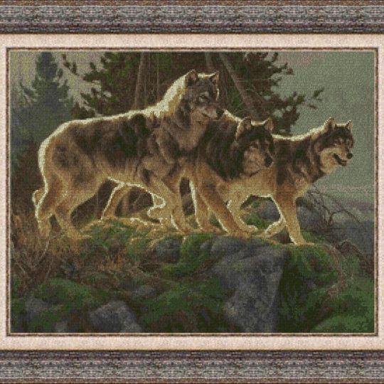 Animales 0048