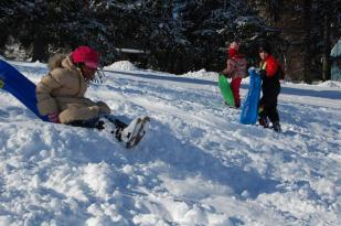 2009 Sledding in the Park