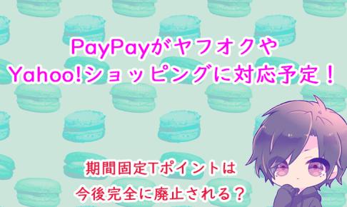 paypay-yahoo