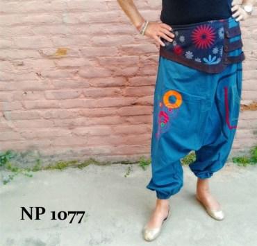 np-1077