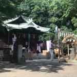 代々木八幡宮で茅の輪くぐり・出会いは「気になる場所」にあり☆