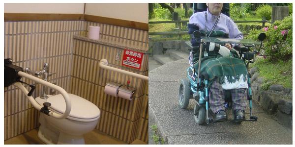 ひまわり号下見、日本昭和村