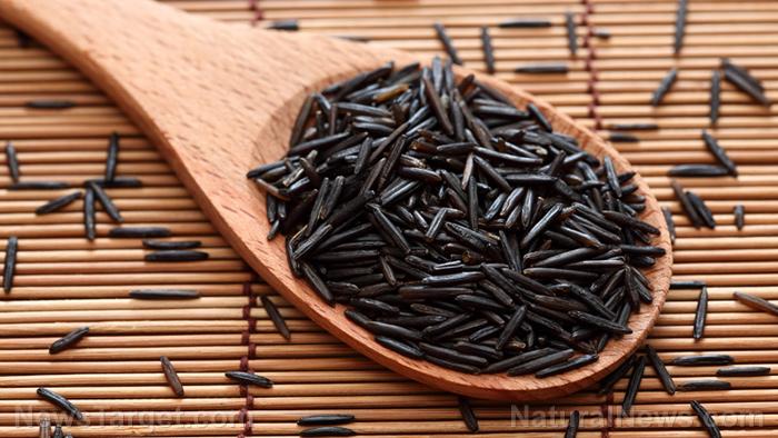 эффект против ожирения проросшего воскового черного риса