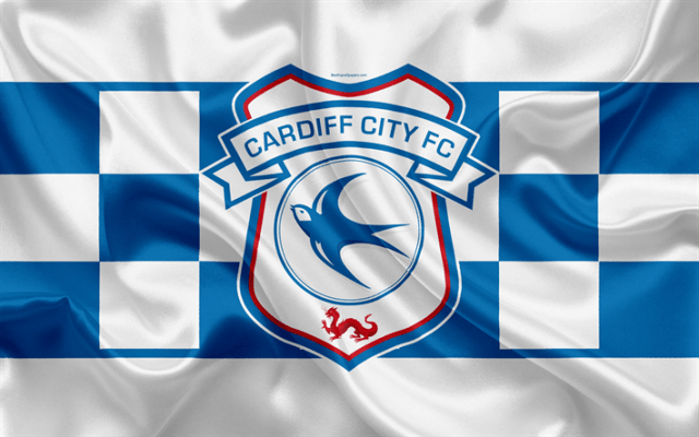 cardiff-city-premier-league-football-himnode.com