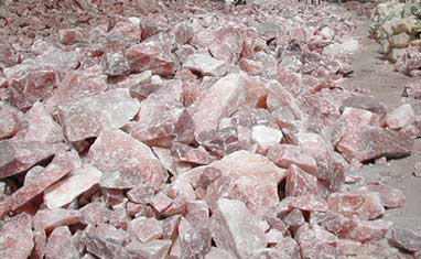 central government issued rs 3 crores to drang rock salt mine