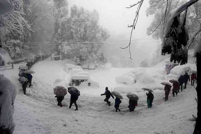 cold-wave-in-himachal