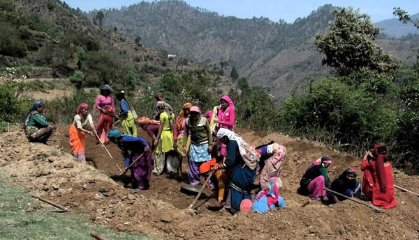 Himachal-Pradesh-to-develop-200-organic-villages