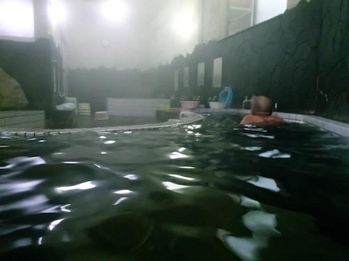 鶴も蘇ったという土佐最古の温泉へ。/蘇鶴温泉 | ひなびた温泉研究所