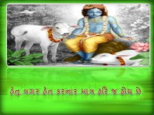 krishnaquote20