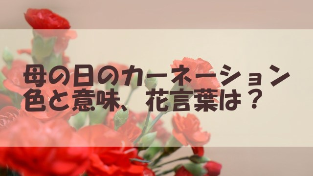 母の日 カーネーション 色 意味 花言葉 要注意カラー