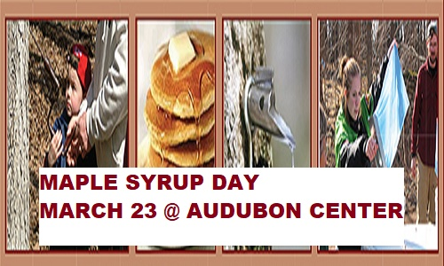 Maple Syrup Day at Audubon Center Sandstone MN