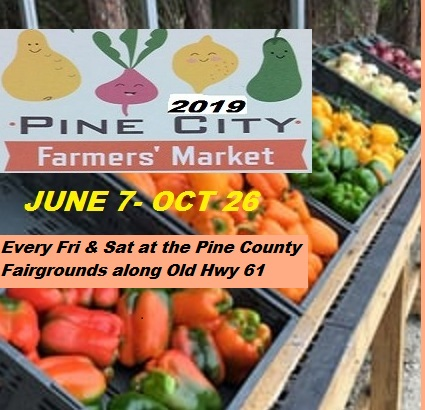 Farmers Market at Pine City MN