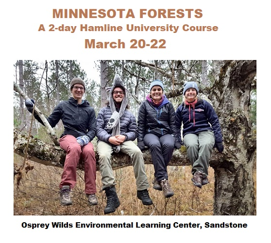 MN Forests Course at Osprey Wilds