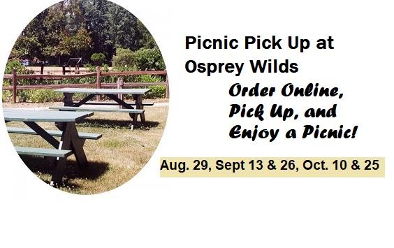 picnic, osprey, sandstone, park