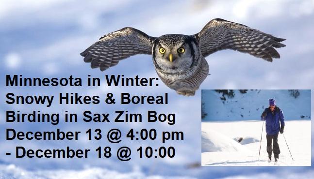 birding, winter hiking, snowshoeing