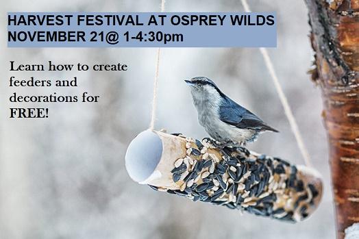 crafts, feeder decor, Osprey Wilds