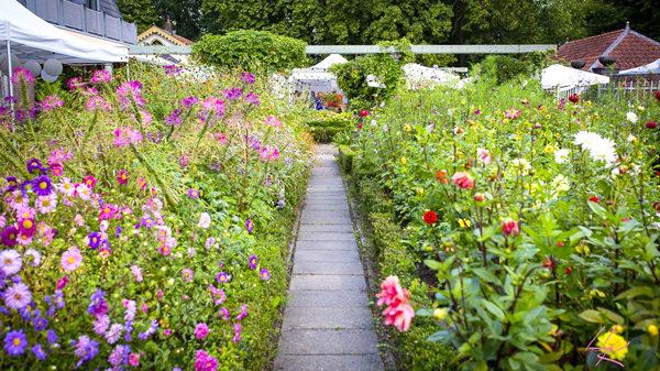 Open tuin zondag 1 september 2019