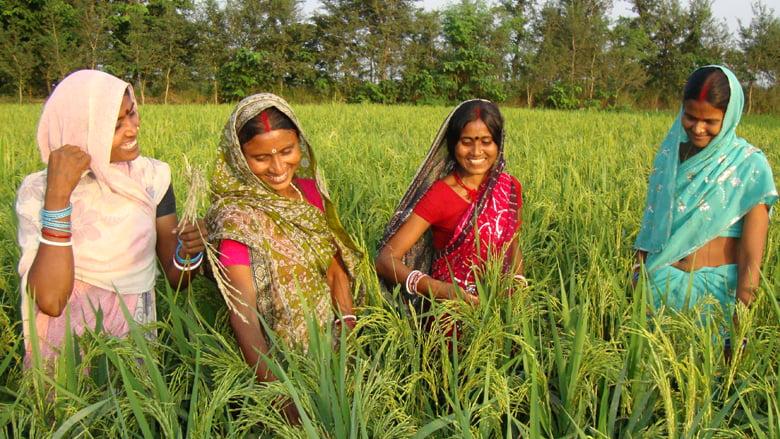 पर्यावरण संरक्षण में कितनी अहम है महिलाओं की भूमिका